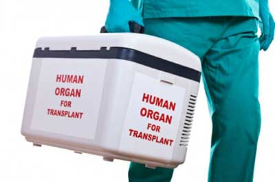 A brief history of organ transplant technology, from 800 BC to 2014